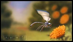MetaL Dragonfly WS